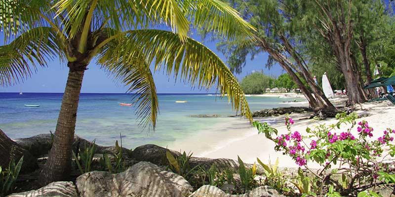 The Beach at Coral Reef Club