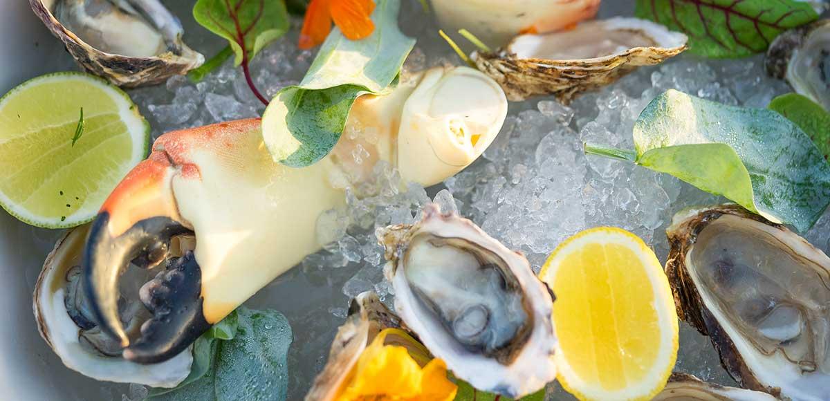 Cuisine at The Yacht Club Restaurant